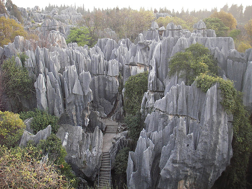 El bosque de piedra en China